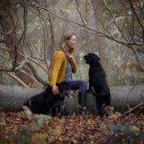 honden-foto-pix-fotografie-zeeland-11