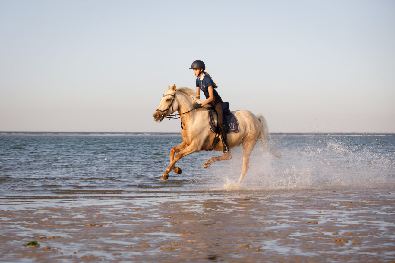 paarden-foto-pix-fotografie-zeeland-30