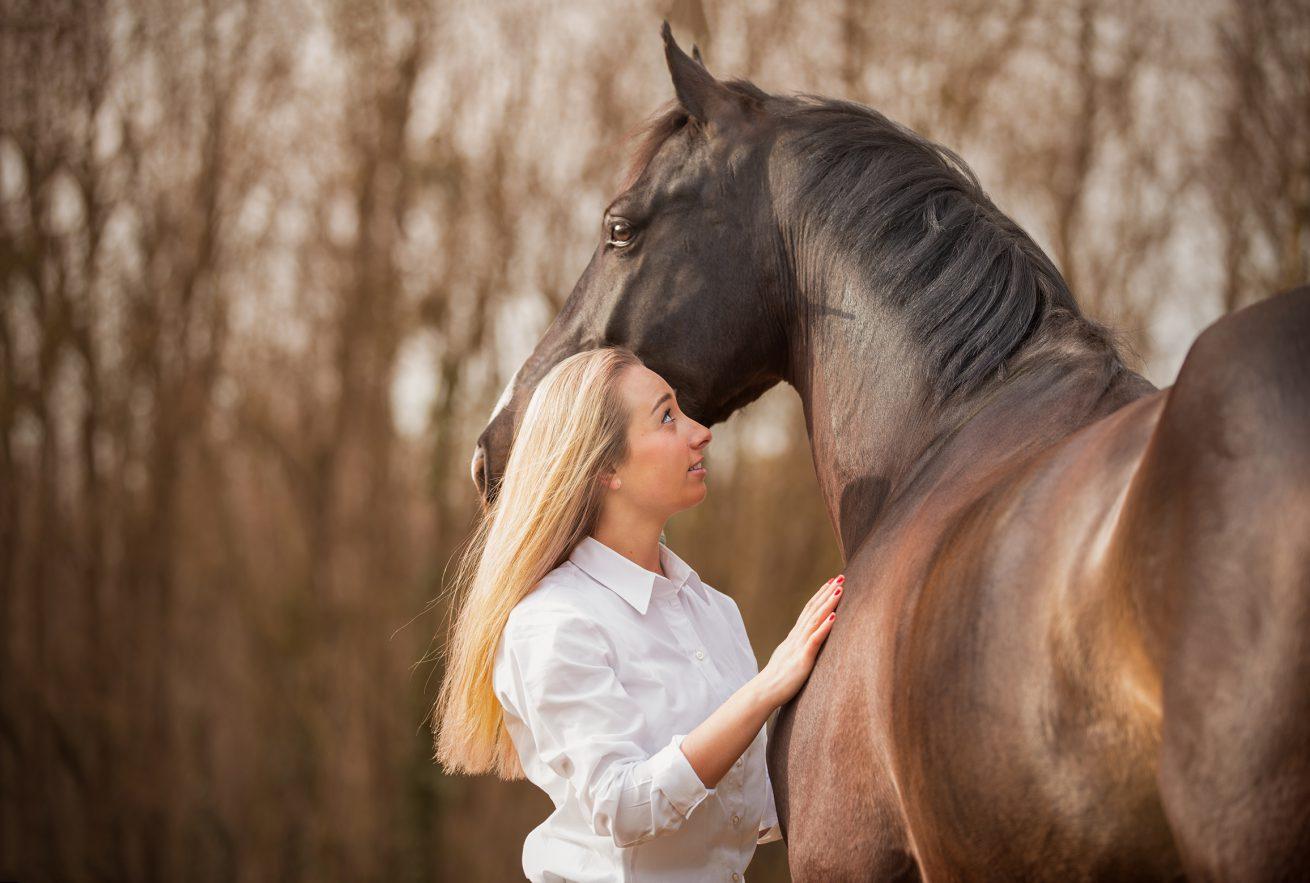 Paarden-foto-PIX-fotografie-zeeland-01