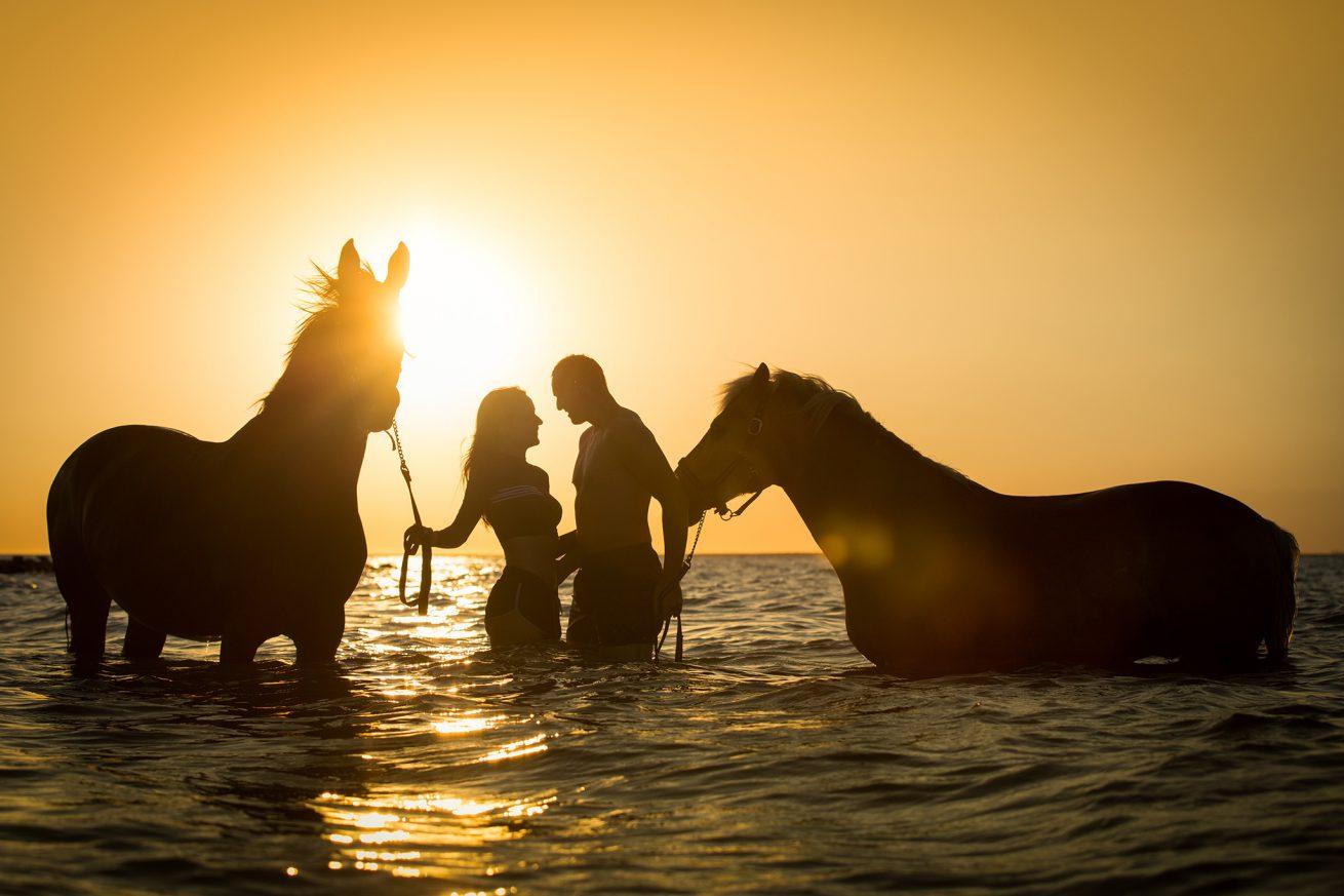 Paarden-foto-PIX-fotografie-zeeland-06