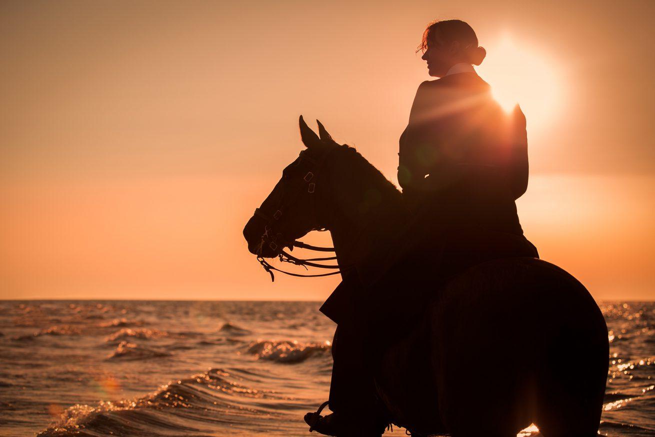 Paarden-foto-PIX-fotografie-zeeland-08
