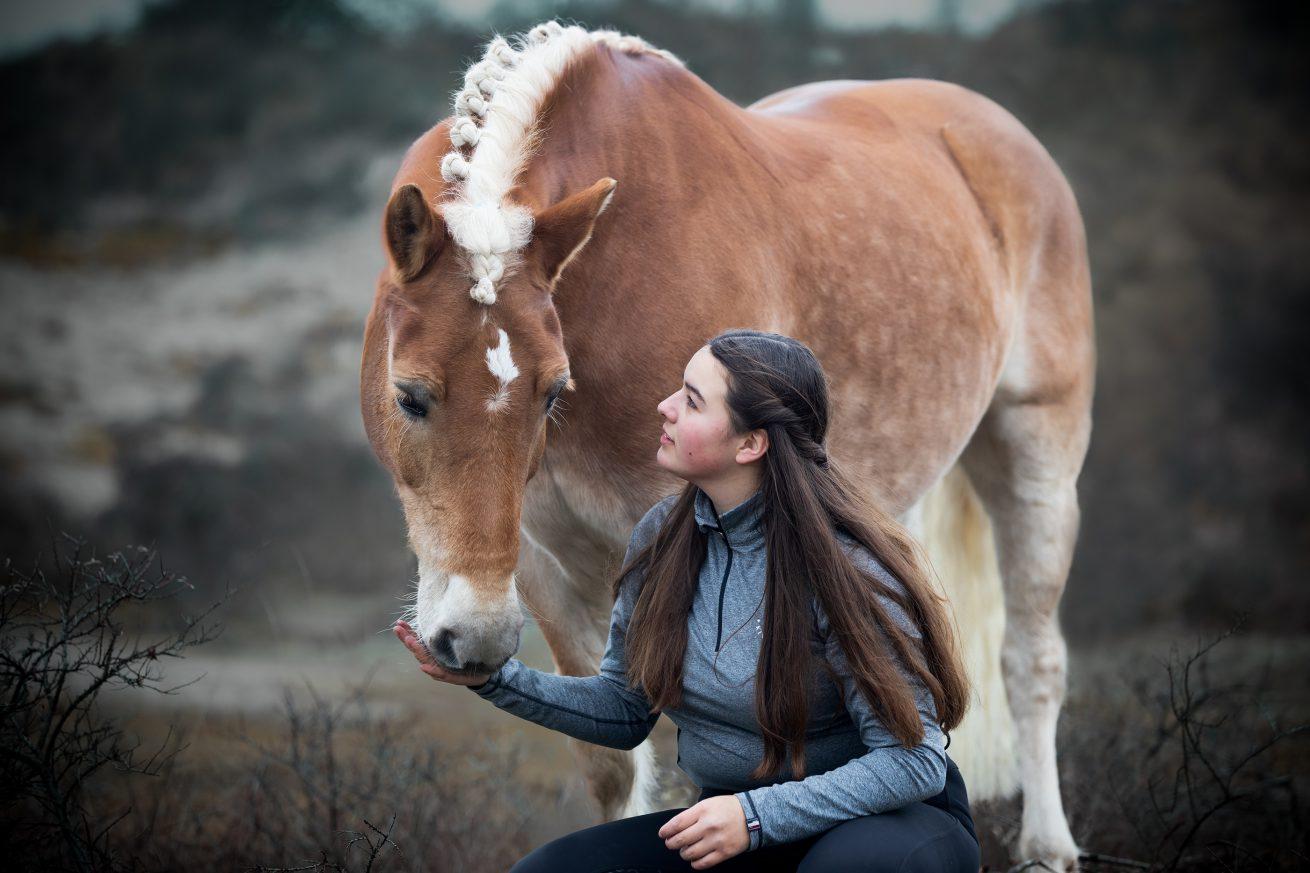 Paarden-foto-PIX-fotografie-zeeland-14