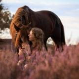 paarden-foto-pix-fotografie-zeeland-23