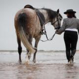 paarden-foto-pix-fotografie-zeeland-27