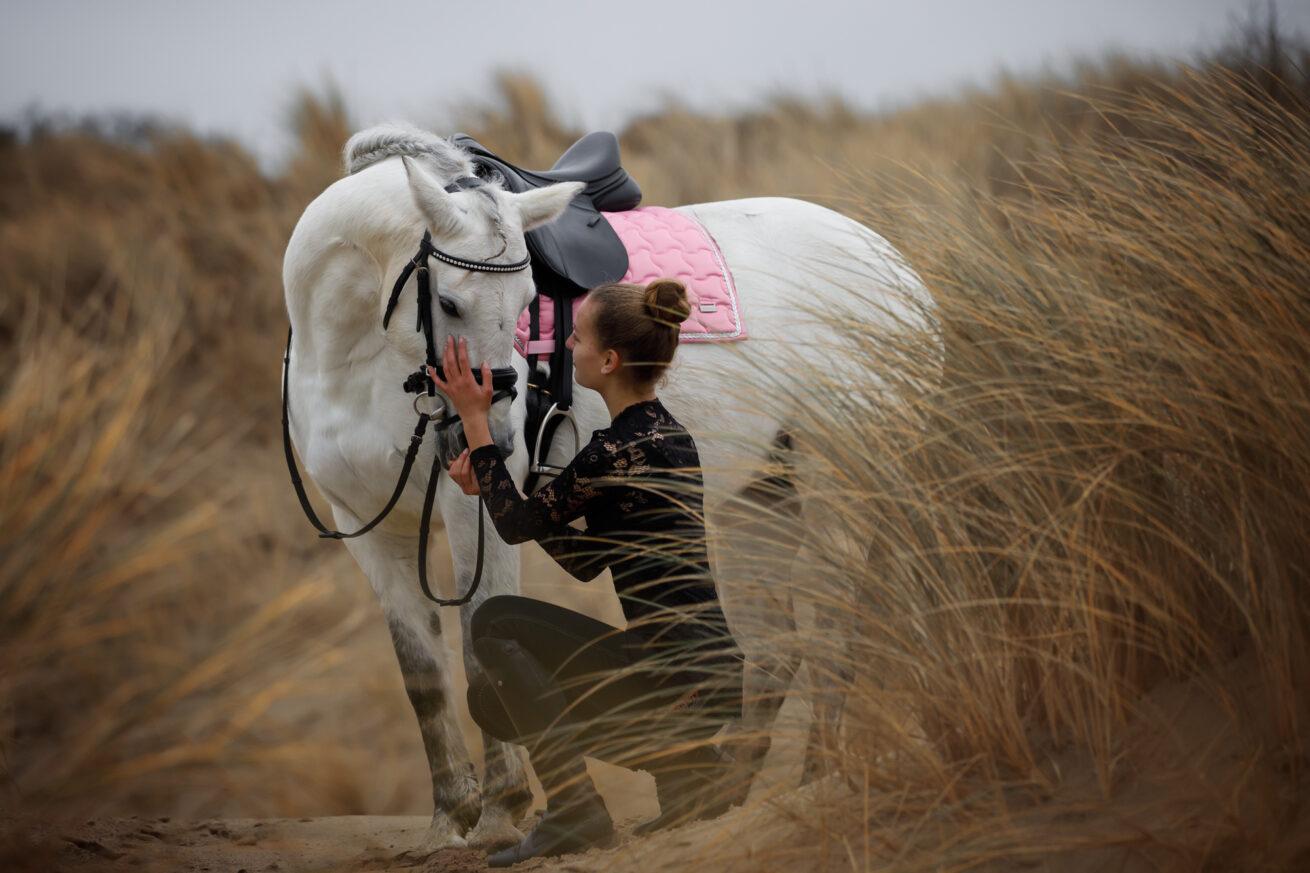 paarden-foto-pix-fotografie-zeeland-34